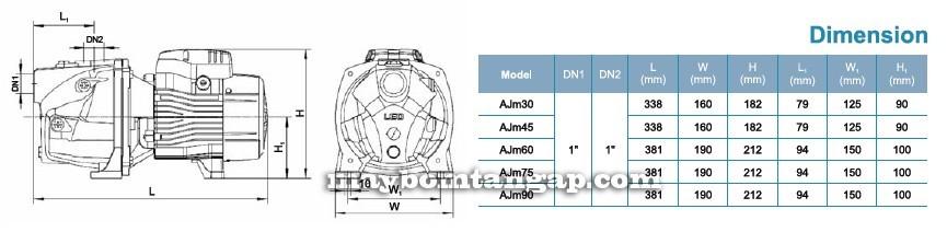 Máy bơm nước LEO AJm30 kích thước