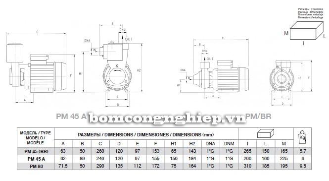 Bảng kích thước chi tiết của máy bơm nước Pentax PM