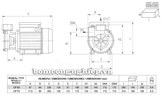 Bảng kích thước chi tiết của máy bơm nước Pentax CP