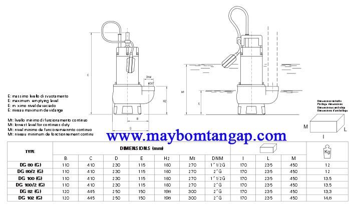 Bảng kích thước chi tiết của máy bơm nước Pentax DG