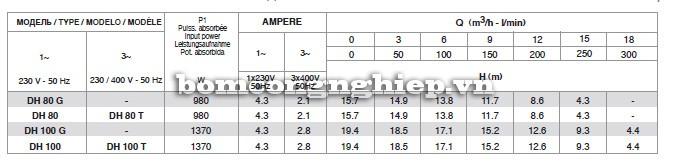 Bảng thông số kỹ thuật của máy bơm nước Pentax DH