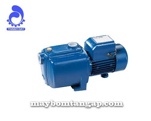 Máy bơm nước Forerun 3MCP 80